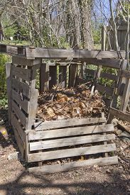 image of decomposition  - A rickety compost bin outside made of recycled wood and filled with different levels of compost in various stages of decomposition - JPG