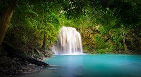 pic of rainforest  - Waterfall in jungle rainforest  - JPG
