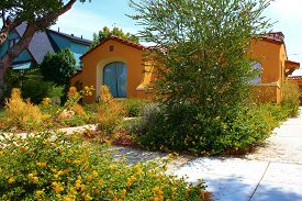 stock photo of drought  - Spanish style California house with drought tolerant plants and trees in the front yard - JPG