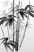Постер, плакат: векторные иллюстрации Восточный стиль живописи бамбука