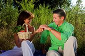 pic of nic  - couple having a pic nic outdoor at sunset - JPG
