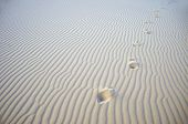 Footsteps in the white gypsum dunes just after sunset in the desert at the White Sands National Monu