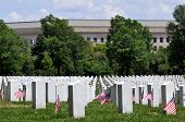 picture of arlington cemetery  - Gravestones decorated with U - JPG