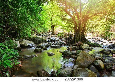 River Stream Landscape Waterfall Green