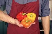 Fresh Peppers Vegetables In Hand Of Chef. Diversity Ingredients. Peak Season Purchasing Ensure Your  poster