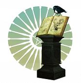 stock photo of pentacle  - a black crow is sitting on a magic book - JPG