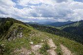 Mountain Panorama Of Brecherspitze, Bavaria poster