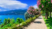 scenic lake Lago Maggiore - beautiful Isola madre with ornamen poster