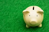 stock photo of save money  - Coin bank sitting on grass with copy space - JPG