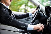 stock photo of steers  - Man driving his car - JPG