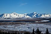 stock photo of denali national park  - Landscape view of fields and mountains in Alaska - JPG