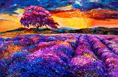 stock photo of fascinating  - Original oil painting of lavender fields on canvas - JPG