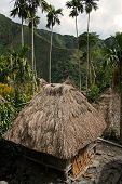 picture of ifugao  - traditional ifugao huts in batad near banaue northern luzon the philippines - JPG