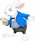 stock photo of watch  - White Rabbit with pocket watch - JPG