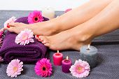 picture of toe nail  - Overhead view of the bare feet of a woman with beautiful manicured red nails resting on a purple towel surrounded by fresh colourful pink gerbera daisies in a spa or beauty salon - JPG