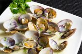 foto of clam  - Delicious fresh clams cooking with a seafood