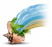 pic of sabbatical  - Vacation destination travel and liesure concept as an ocean conch shell with tropical plants and hot sandy beach emerging as a fun in the sun symbol of a relaxation escape shaped as a wave on a white background - JPG