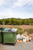 stock photo of valencia-orange  - Overflowing bins next to Orange Orchard - JPG