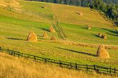 stock photo of haystack  - summer landscape - JPG