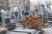 picture of burial  - Burials on the cemetery Vysehrad in the city of Prague - JPG