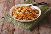 Chow Mein With Chicken And Vegetables, Horizontal poster