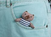 pic of teddy  - Teddy bear in a blue jeans pocket - JPG