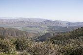 pic of anza  - Anza Borrego desert landscape of mountain range and native plants - JPG
