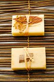 pic of washtub  - Two nature soap on bamboo mat - JPG