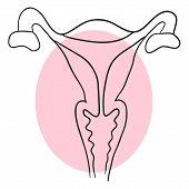 image of uterus  - Vector doodle uterus is a cross - JPG