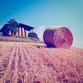 stock photo of hay bale  - Tuscany Landscape with Many Hay Bales Retro Effect - JPG