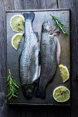 image of brook trout  - trout on metal table with lemon and rosemary - JPG