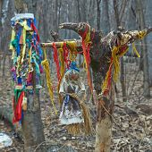 picture of pagan  - Offerings to the pagan gods in the forest temple - JPG