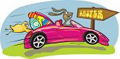 picture of easter bunnies  - crazy rabbit in a beautiful pink car and easter eggs - JPG