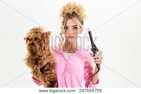 poster of Vet. Pet Salon. Petshop. Beauty Salon For Animals. Grooming Tools. Dog Salon. Grooming. Grooming Mas