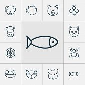 Zoology Icons Set With Arachnid, Spider Web, Globefish And Other Toad Elements. Isolated  Illustrati poster