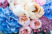 Flower Background With Amazing Pink And Creamy Peonies. Bouquet Of Gentle Peony Flowers. poster