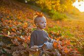 Child Autumn Leaves Background. Warm Moments Of Autumn. Toddler Boy Blue Eyes Enjoy Autumn. Small Ba poster