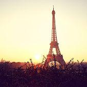 Tower Eiffel During Sunrise On Trocadero poster