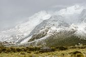 Fuzzy Snowy Mountains Along The Hooker Valley Track, Mount Cook National Park poster