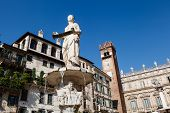 Fountain And Statue Of Madonna On Piazza Delle Erbe In Verona, Veneto, Italy