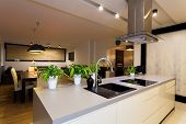 picture of kitchen appliance  - Urban apartment - white kitchen counter with plants