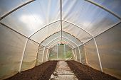Empty Small Vegetable Greenhouse Interior