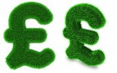 Pound Sterling Symbol Made Of Grass