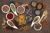 picture of naturopathy  - Herbal medicine selection also used in witches magical potions over brown lokta paper background - JPG