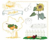 foto of horticulture  - set of vector sketches on the theme of horticulture - JPG