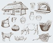 image of cattle breeding  - Farm animals sketches objects livestock breeding plants set - JPG