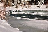 stock photo of blanket snow  - A snow blanket over Vallecito Creek in Vallecito - JPG