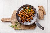 stock photo of edible mushroom  - Roasted wild forest mushrooms in pan on white textured background - JPG