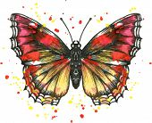 foto of paint spray  - Butterfly drawing by ink and watercolor with paint stains - JPG