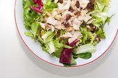 pic of escarole  - Chicken salad with tomatoes and raisin in a white bowl - JPG